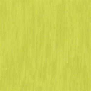"Bazzill Fourz Cardstock 12""X12"" Granny Smith / Grass Cloth"
